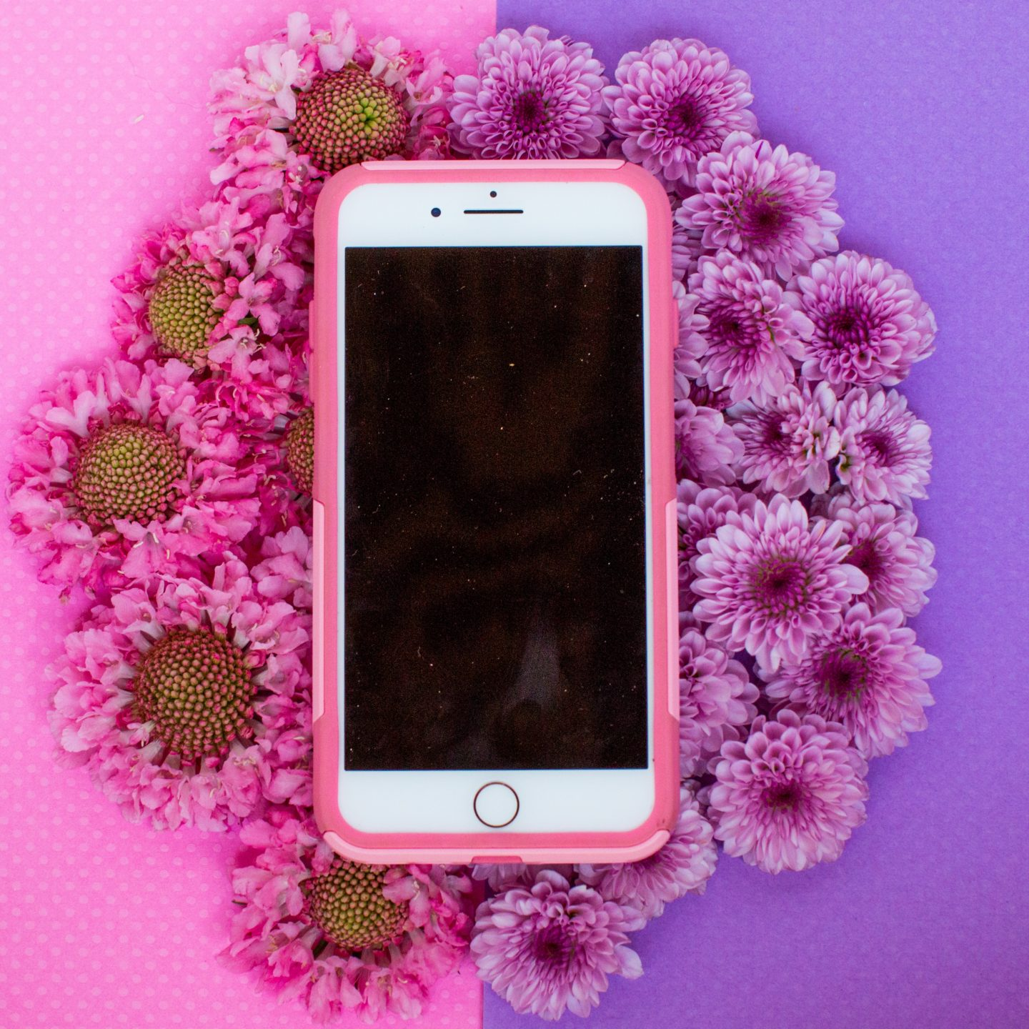 how to get instagram on iphone 4